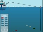 Fishing the sea